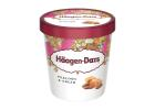 Haagen Dazs Pralines & Cream Ice Cream 460 ml