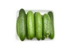 Prepacked Village Cucumbers 800 g