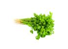 Fresh Coriander (Bunch)