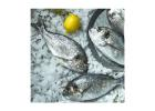 Fresh Local Sea Bream 550 g
