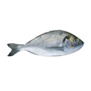 Levantina Fish Sea Bream Scaled and Gutted 700 g